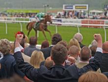 Kempton Park, winner